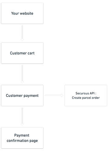 ecommerce direct integration scheme